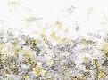 Breathe 3m Wallcovering Lichen