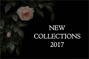Discover the New Collections from Black Edition