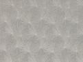 Pacaya Swedish Grey
