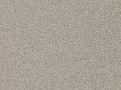 Gobi Parchment