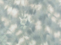 Mist Aquamarine