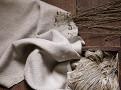Loom Plaster 1