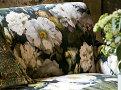 Maroque 65cm Cushion Lazurite 3