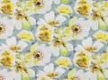 Eden Daffodil