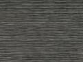 Elba Grey Seal
