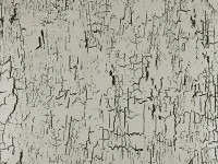 Antica Flock Wallcovering