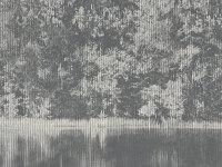 Mizumi Panel