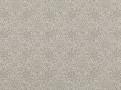 Ornare Silver Birch
