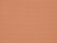 Aston Henna