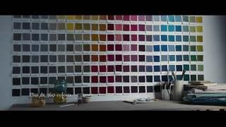 Video Linara - A Journey of Colour