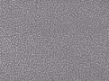 Atia Wallpaper Dove