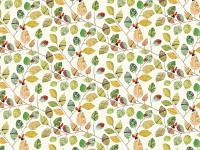 Ladybugs Image 2