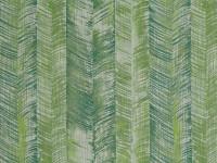 Zamiifolia