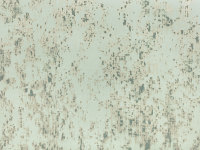 Loess Wallcovering