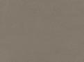 Dino Lichen