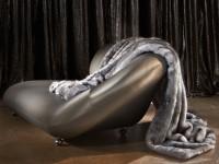 Grey Wolf Image 3